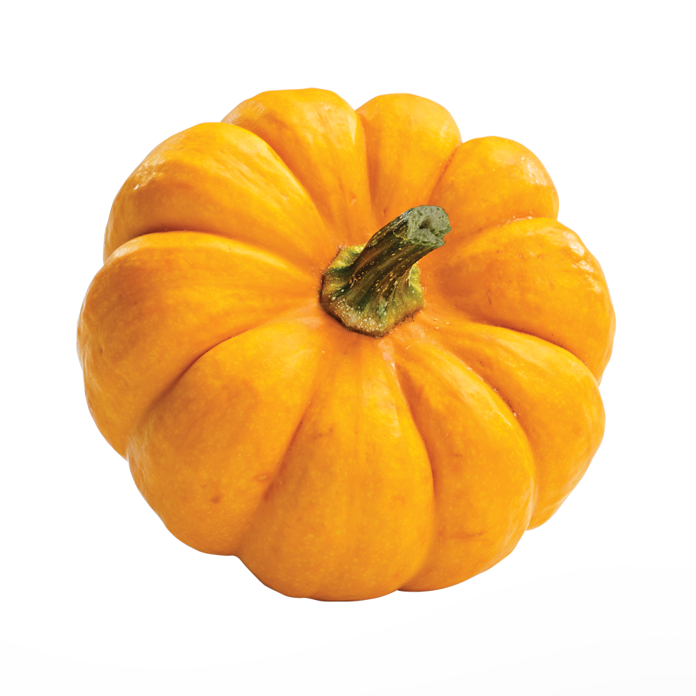 Beneful Pumpkin