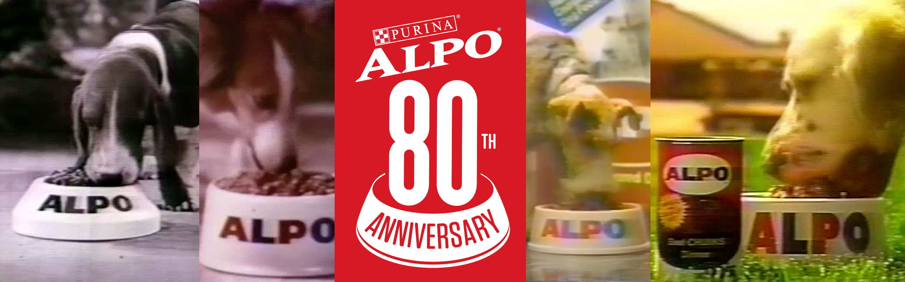 Alpo-Dog-Food-80th-Anniversary.png