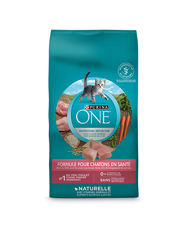 Purina-one-cat-healthy-kitten-formula