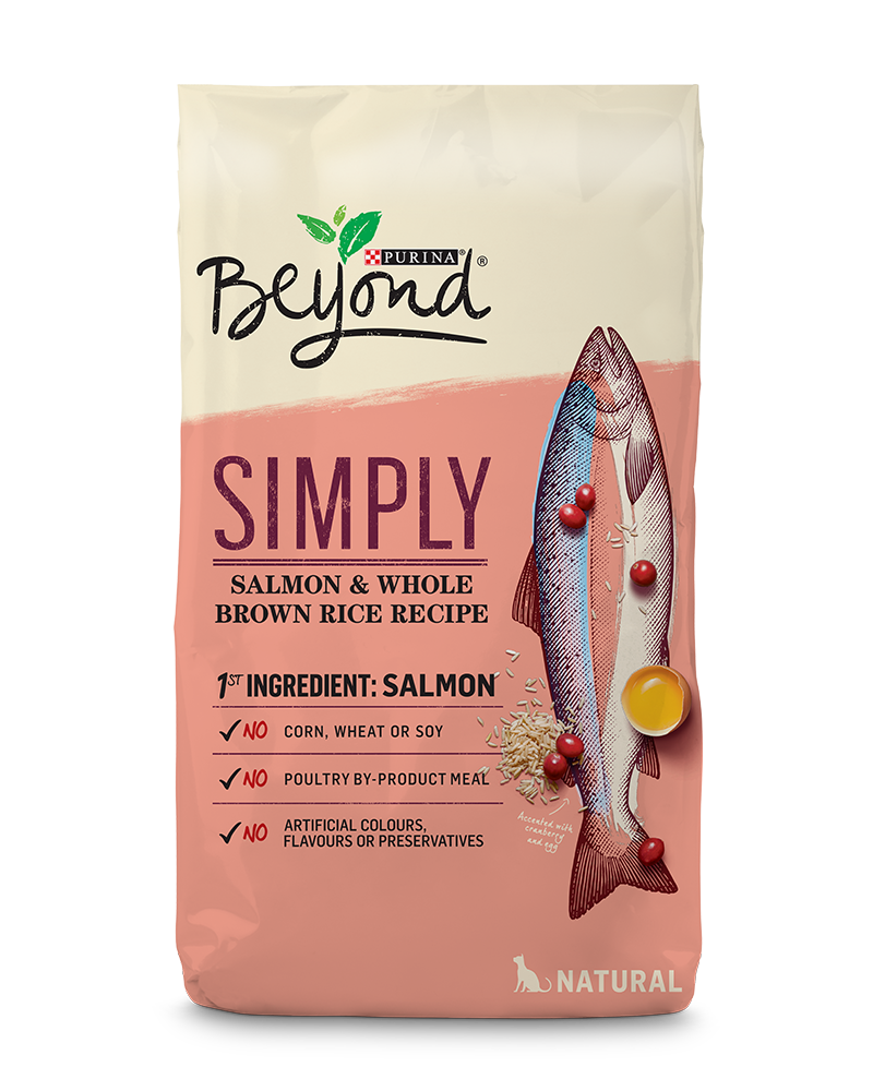 beyond-cat-dry-simply-salmon-whole-brown-rice