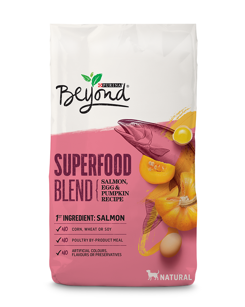 beyond-dog-dry-superfood-salmon-egg-pumpkin
