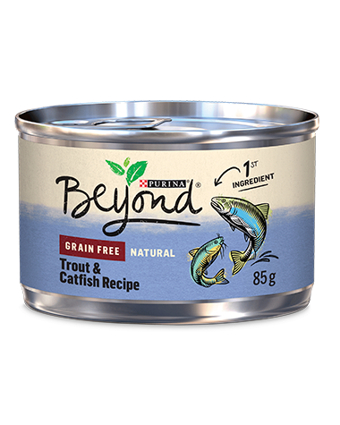 Beyond Grain Free Trout & Catfish Wet Cat Food