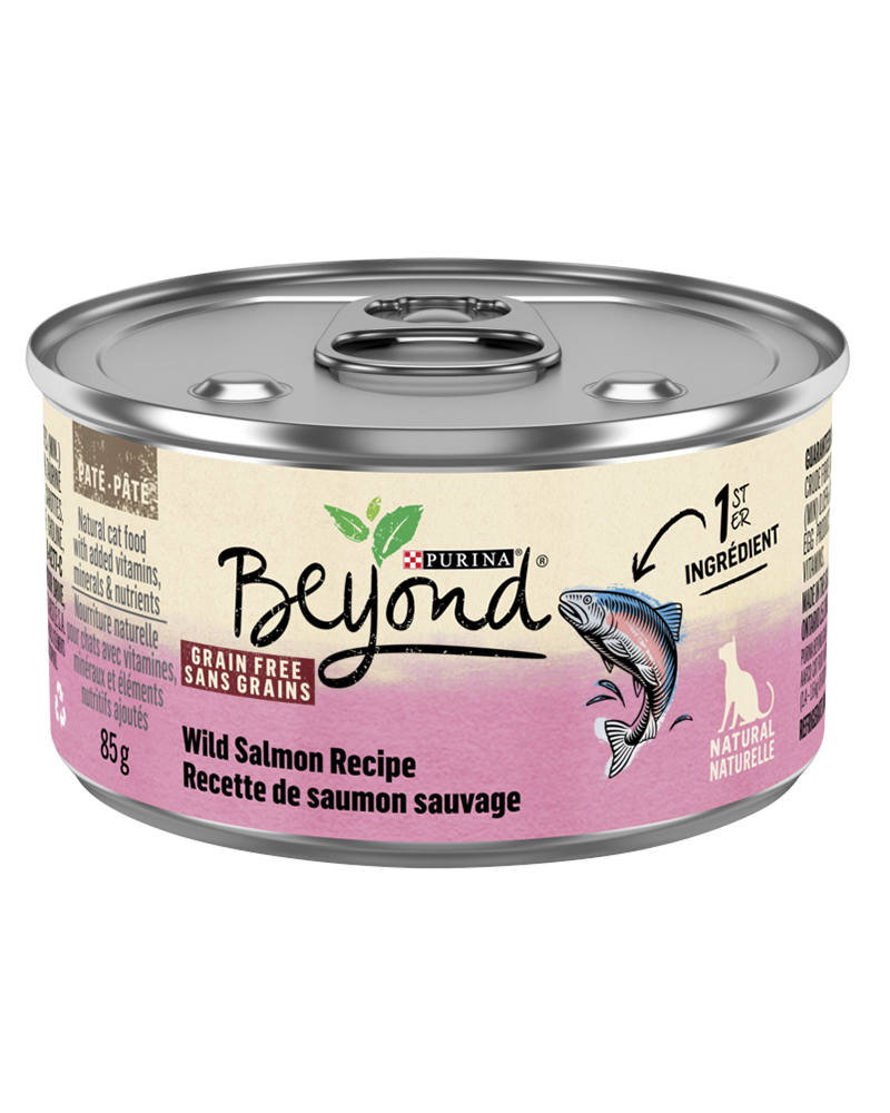 beyond-wet-cat-wild-salmon