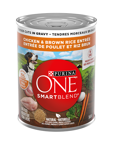 purina-one-smartblend-true-instinct-wet-dog-tender-cuts-chicken-brown-rice