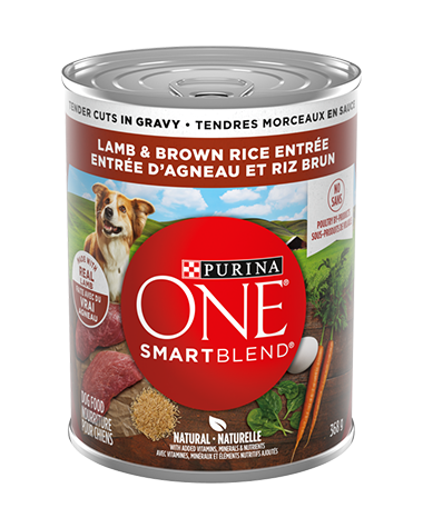 purina-one-smartblend-true-instinct-wet-dog-tender-cuts-lamb-brown-rice