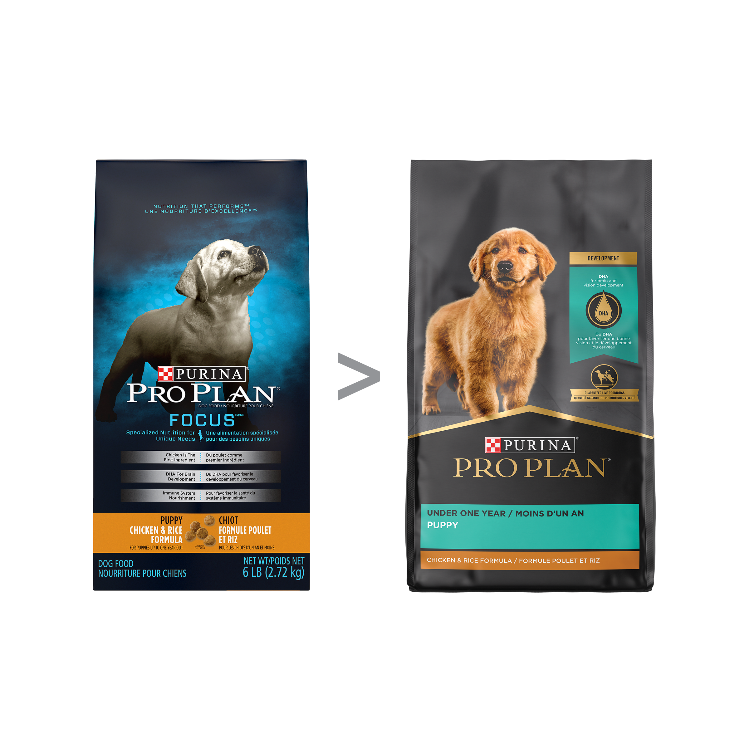 purina-pro-plan-puppy-focus-chicken-rice