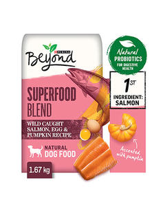 beyond-dog-dry-superfood-blend