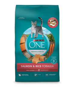 Purina ONE® Salmon & Rice Formula Dry Cat Food