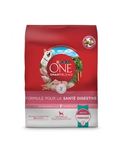 Purina-one-dog-digestive-health-formula-fr