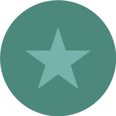 star-icon-reviews