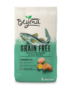 beyond-cat-dry-grain-free-ocean-whitefish-egg