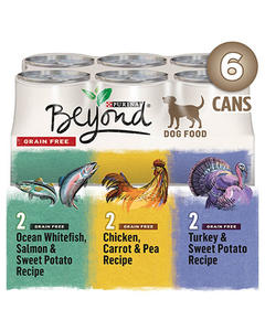 beyond-wet-dog-variety-pack-6