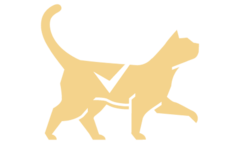 Cat with checkmark icon
