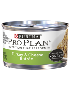 pro-plan-focus-adult-cat-turkey-cheese-entree