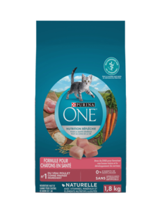 purina-one-dry-kitten