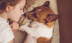 Young girl sleeping in bed with dog