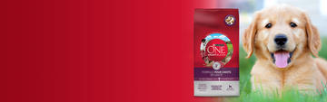 Purina ONE Puppy Banner FR