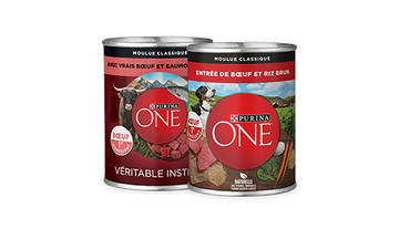 Purina ONE wet dog food