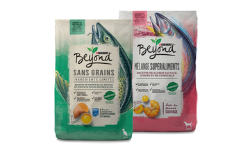 Beyond Dry Dog Food and Dry Cat Food