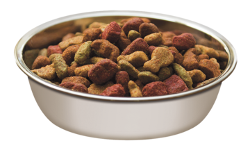 Alpo dry dog food in a bowl