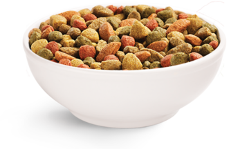 Beneful dry dog food in a bowl