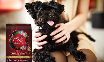 Purina-one-dog-review