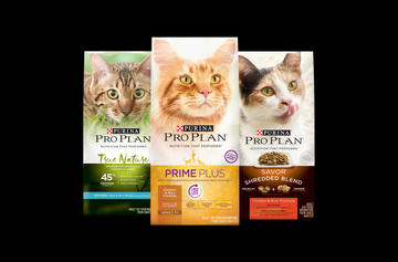 Pro Plan Dry Cat Food CTA
