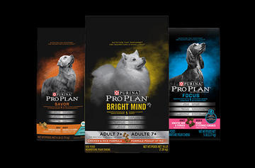 pro-plan-dry-dog-food