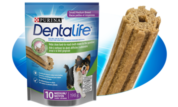 Daily Oral Care Dog Treats