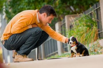 Dog and Cat Feeding Questions | Purina