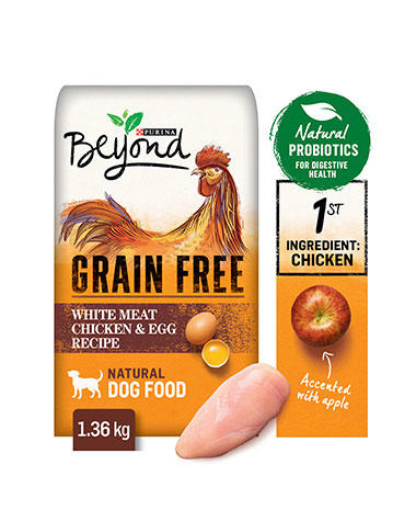beyond-dog-dry-grain-free-white-meat-chicken-egg