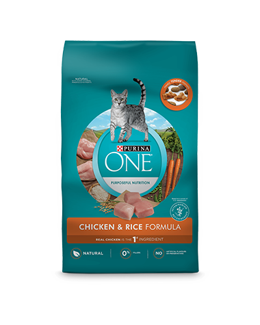 Purina ONE® Chicken & Rice Formula Dry Cat Food