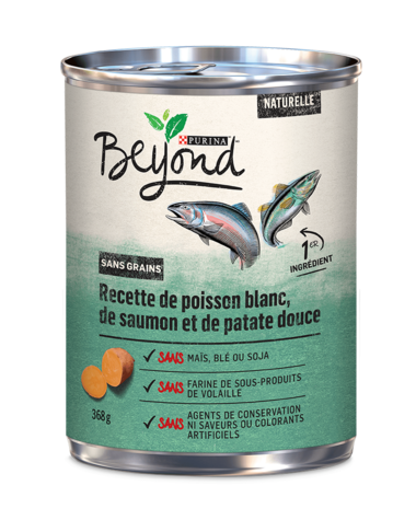 beyond-wet-dog-ocean-whitefish-salmon