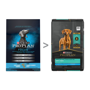 Pro Plan® FOCUS® Puppy Large Breed Chicken & Rice Formula Dry Dog Food